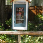 Storytime and Little Free Libraries Unveiling in King Park (& 49 other metro parks!)