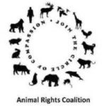 Animal Rights Coalition at the Kingfield Farmers Market This Sunday!
