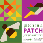 Wanna Help Plant a Pollinator Patch at MLK Park??
